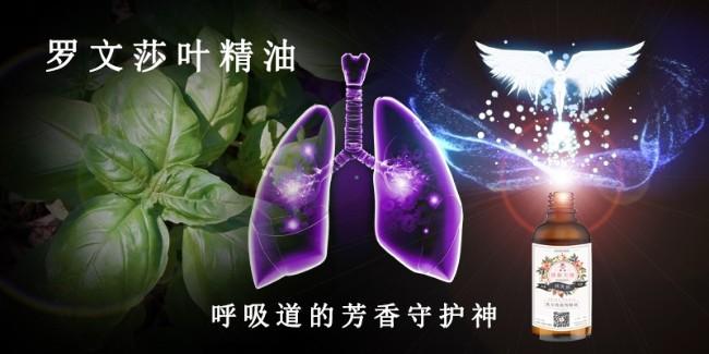 罗文莎叶精油 — 呼吸道的芳香守护神