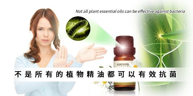 不是所有的植物精油都可以有效抗菌