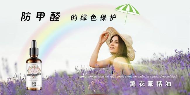 防甲醛的绿色保护伞—薰衣草精油