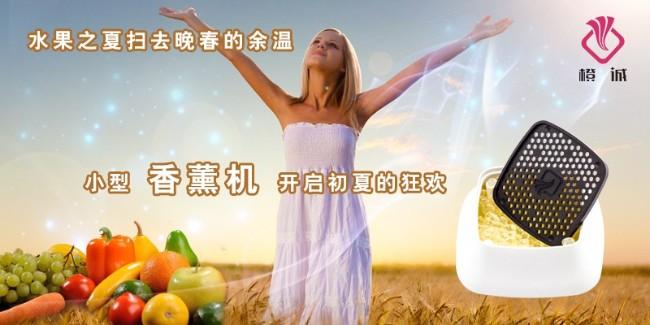 水果之夏扫去晚春的余温,小型香薰机开启初夏的狂欢